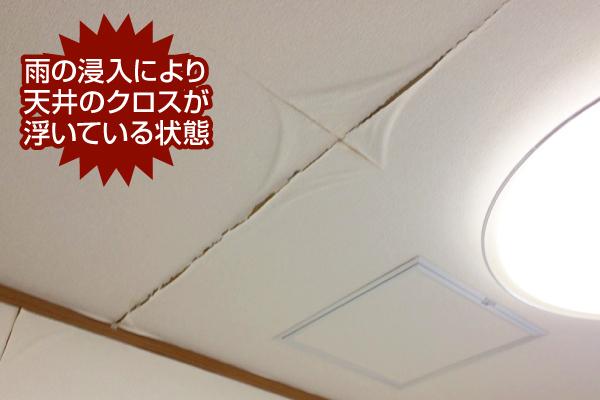 雨の浸入により天井のクロスが浮いている状態